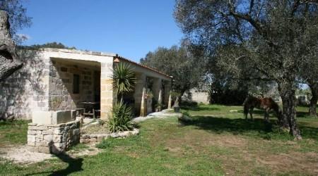 Urlauf auf dem Bauernhof in Italien - Rocco Avantaggiato