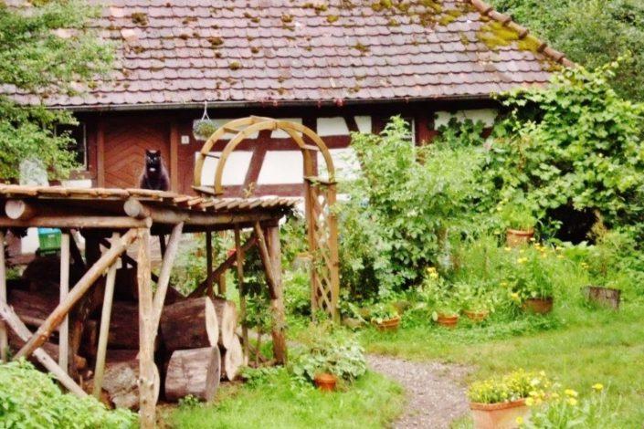 Ferien auf dem Biohof Naturgut Sallinger Stöckenmühle