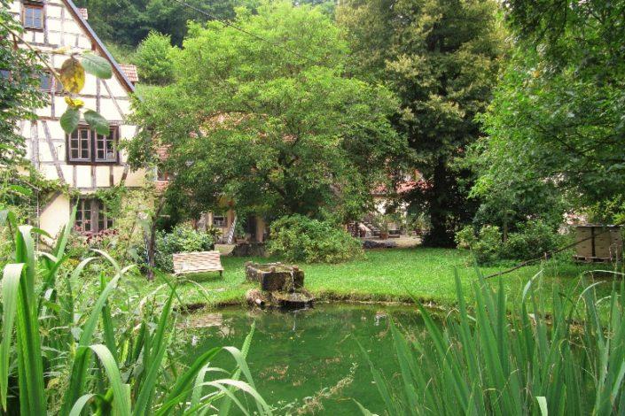 Romantisches Gut im Naturschutzgebiet