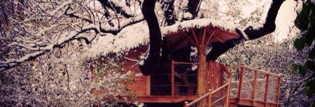 Baumhaus im Schnee