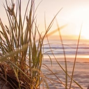 Ostsee-Strand im Sonnenuntergang