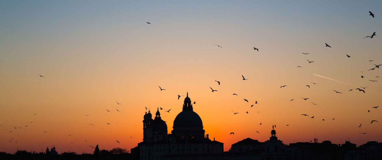 Venedig im Sonnenuntergang mit Vögeln