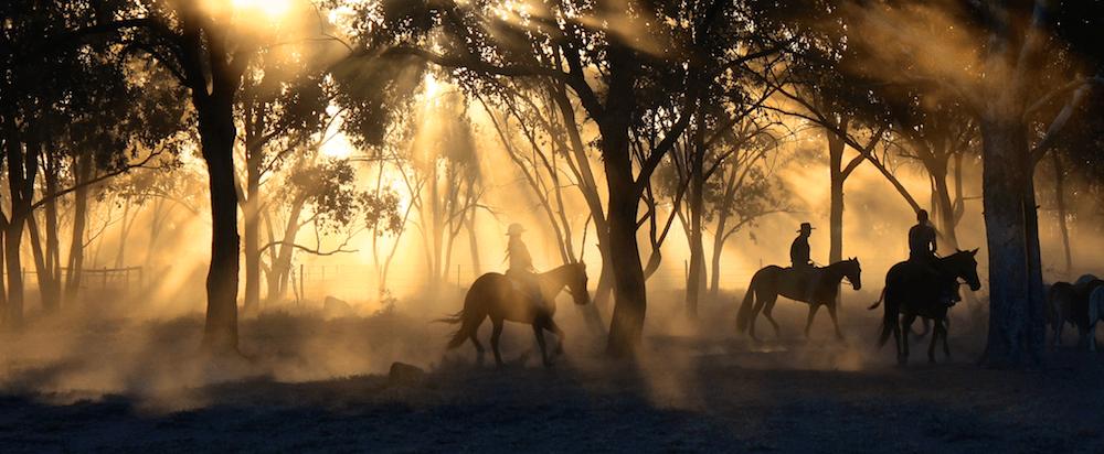 Drei Menschen reiten auf Pferden im Sonnenuntergang durch den Wald