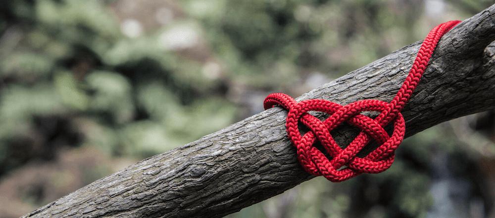 Ein rotes Seil wurde zu einem Herz verknotet und an einen Ast gebunden
