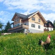 Das Landhaus der Knödl-Alm auf einer grünen Wiese von vorne